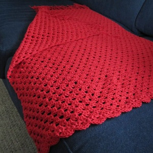 Red organic blanket 153 KB